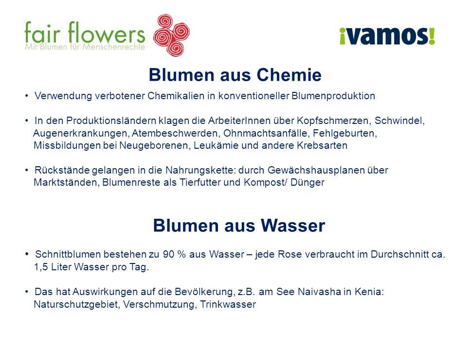 Blumen aus Chemie Blumen aus Wasser