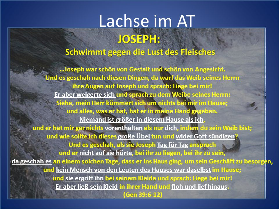 Lachse im AT JOSEPH: Schwimmt gegen die Lust des Fleisches