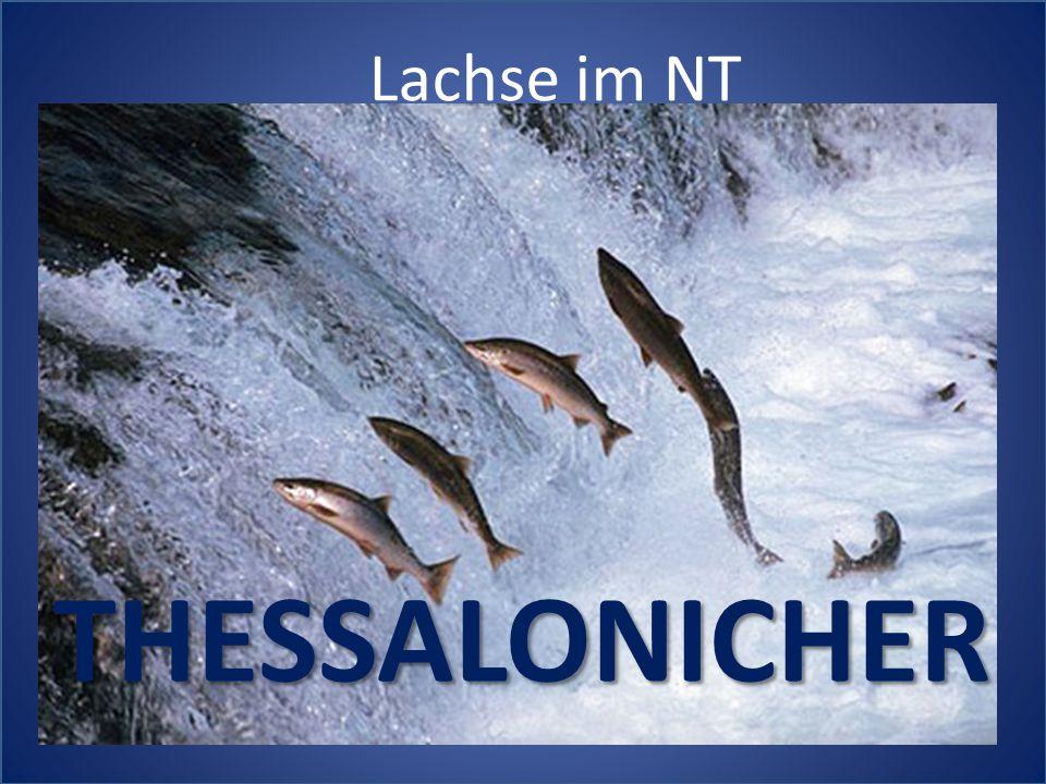 Lachse im NT THESSALONICHER