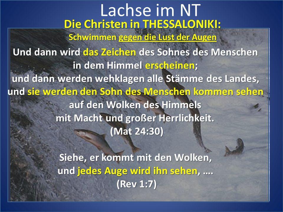 Lachse im NT Die Christen in THESSALONIKI: