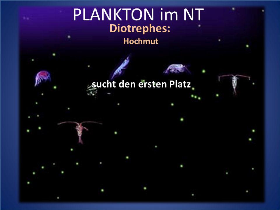 PLANKTON im NT Diotrephes: Hochmut sucht den ersten Platz