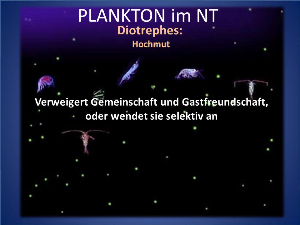 PLANKTON im NT Diotrephes: