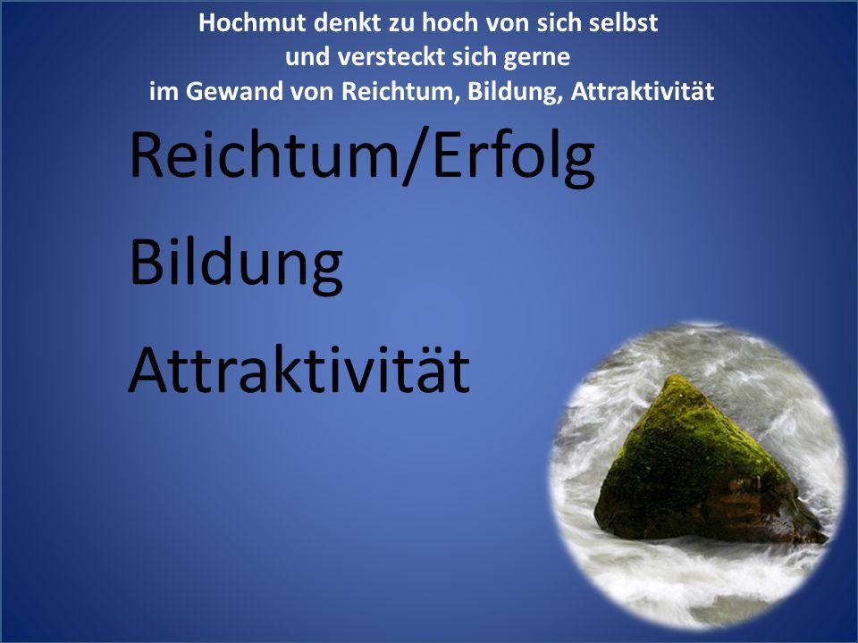 Reichtum/Erfolg Bildung Attraktivität