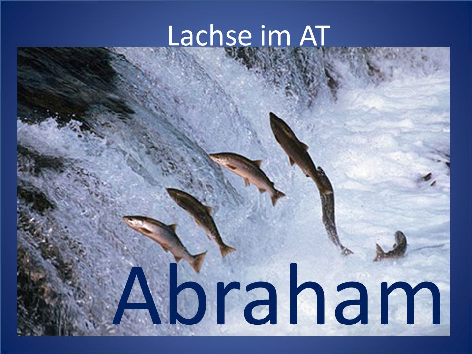 Lachse im AT Abraham