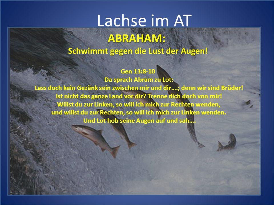 Lachse im AT ABRAHAM: Schwimmt gegen die Lust der Augen! Gen 13:8-10