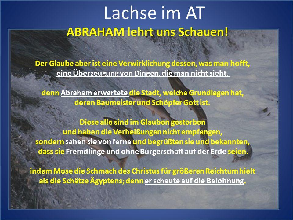 Lachse im AT ABRAHAM lehrt uns Schauen!