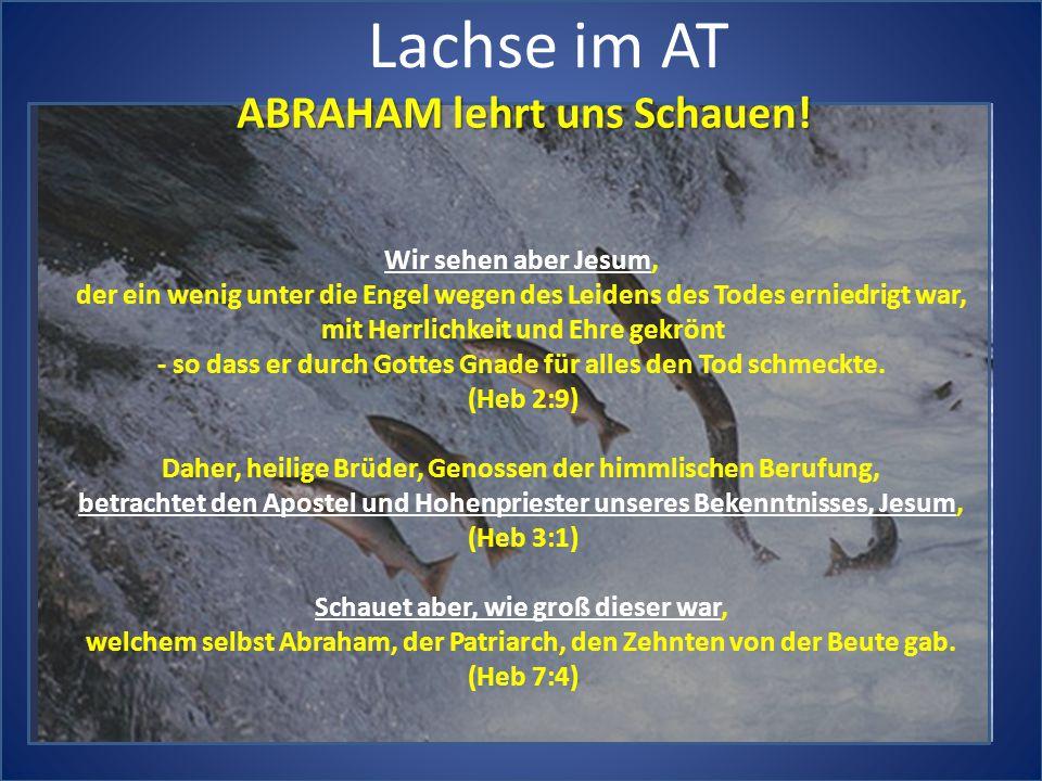 Lachse im AT ABRAHAM lehrt uns Schauen! Wir sehen aber Jesum,