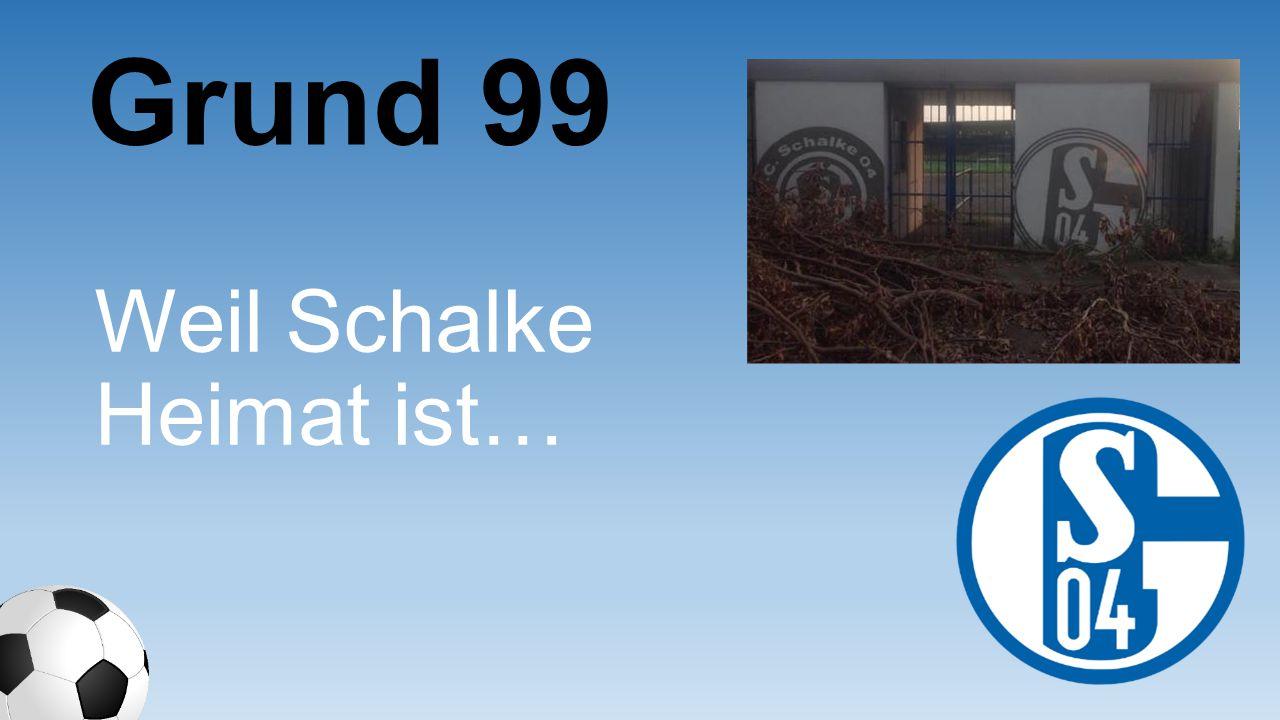Grund 99 Weil Schalke Heimat ist…