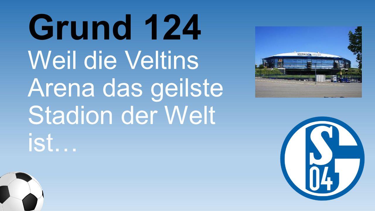 Grund 124 Weil die Veltins Arena das geilste Stadion der Welt ist…