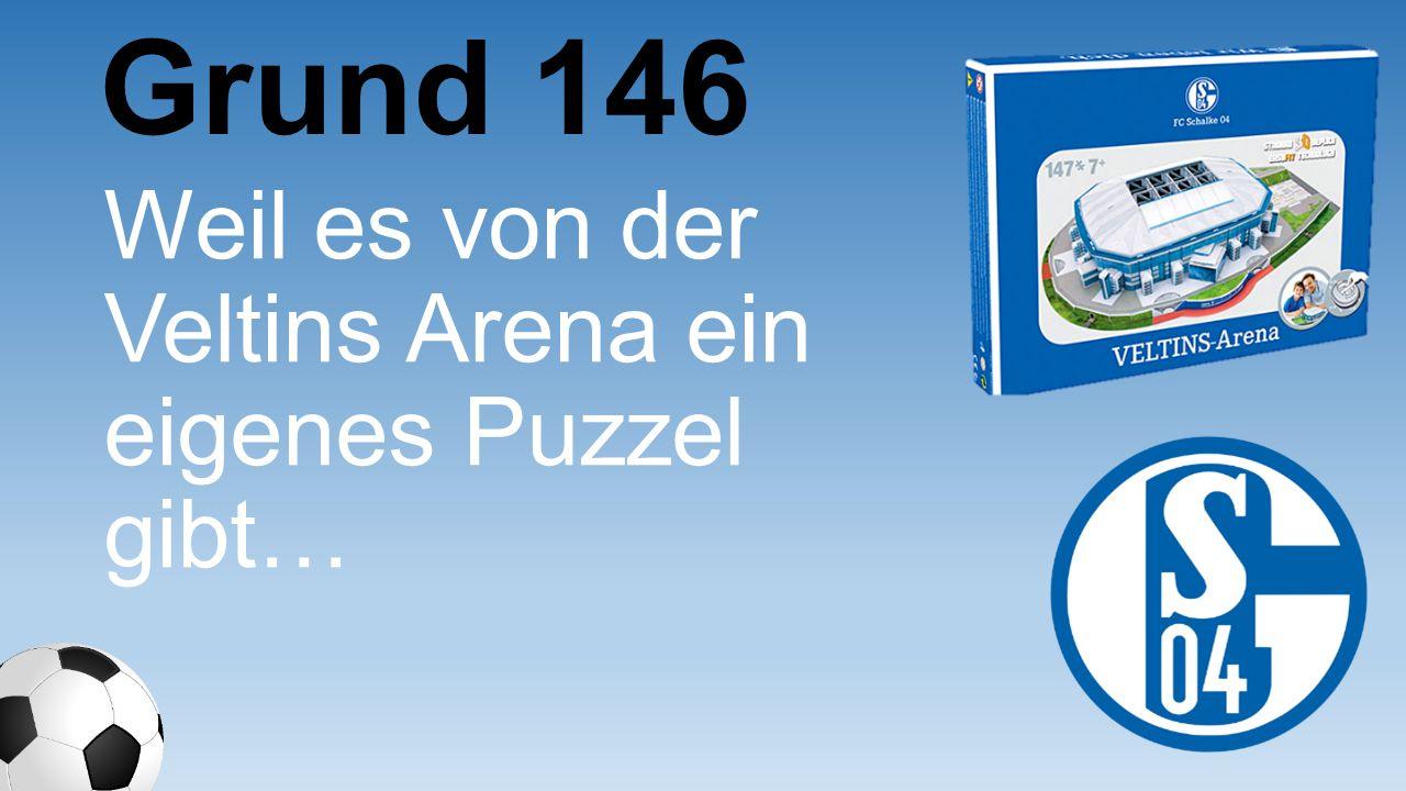 Grund 146 Weil es von der Veltins Arena ein eigenes Puzzel gibt…