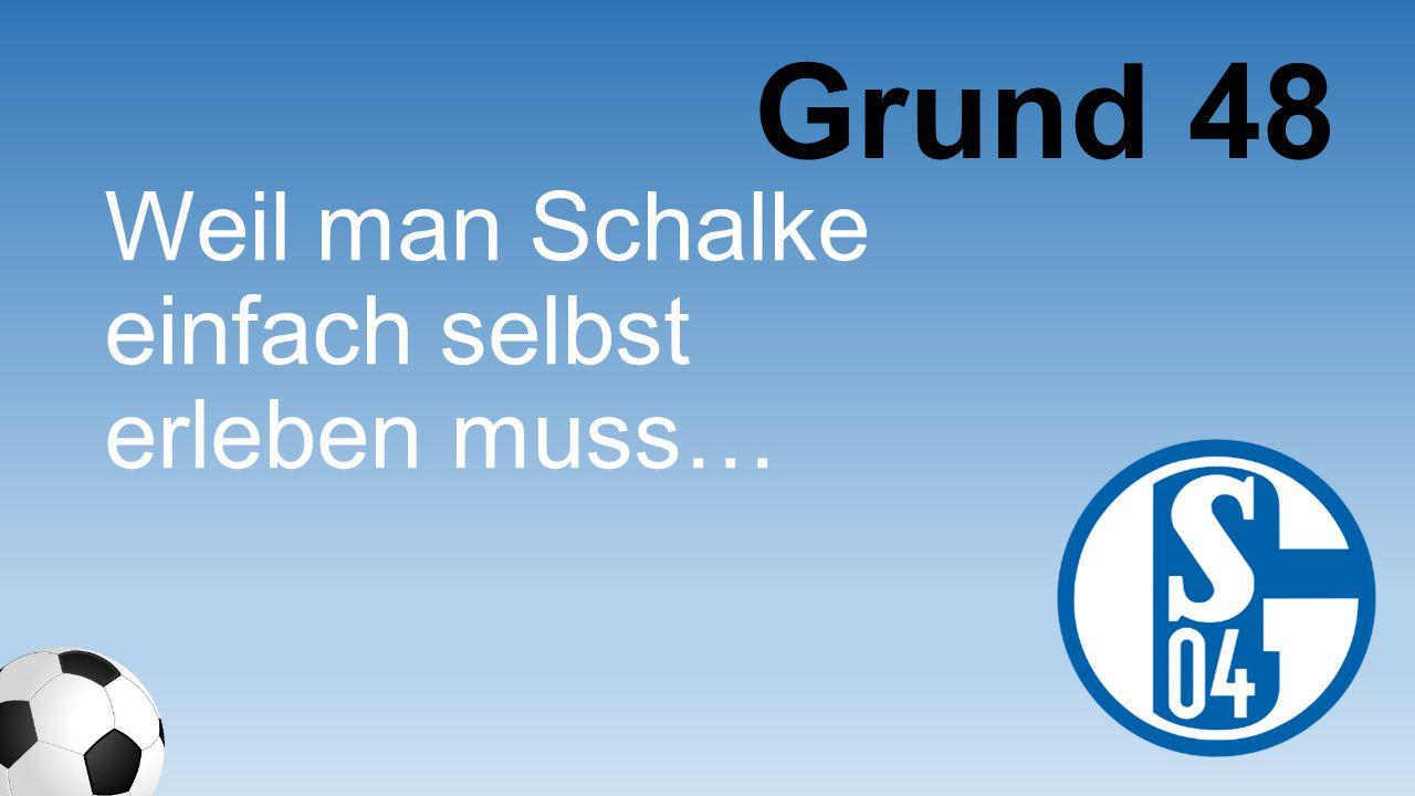 Grund 48 Weil man Schalke einfach selbst erleben muss…