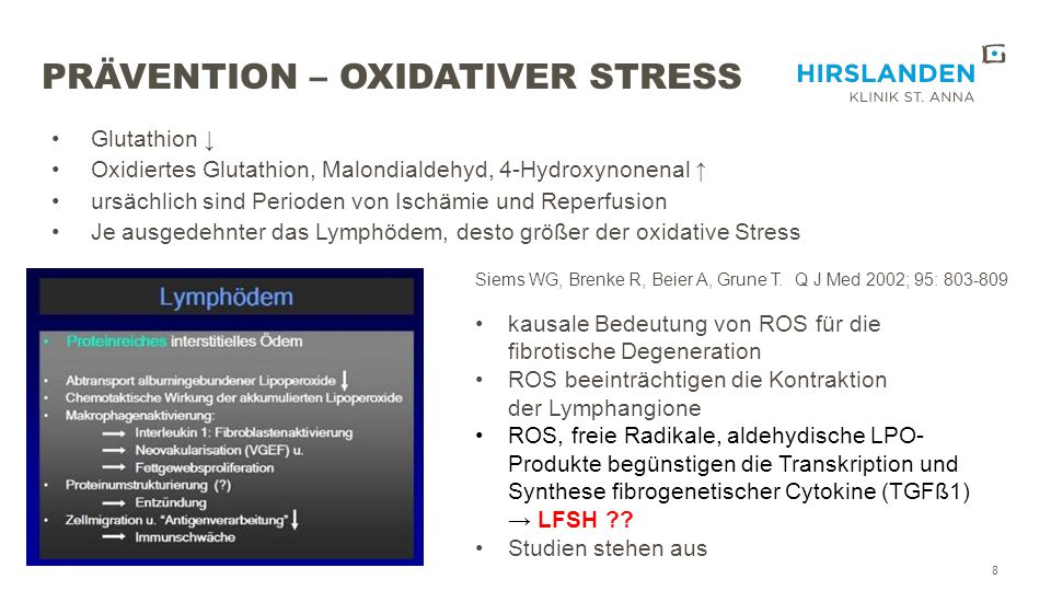 Prävention – oxidativer Stress