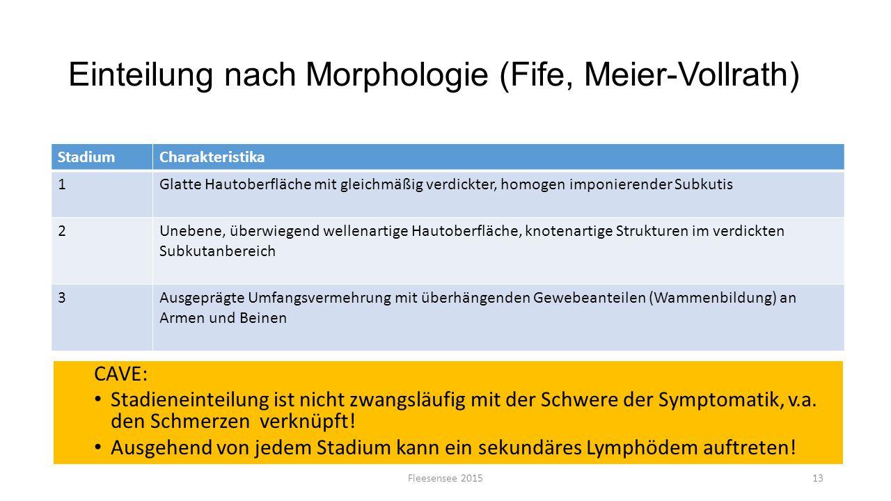 Einteilung nach Morphologie (Fife, Meier-Vollrath)