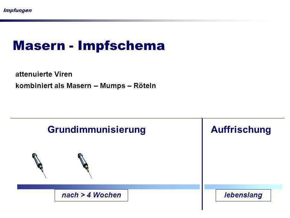 Masern - Impfschema Grundimmunisierung Auffrischung attenuierte Viren