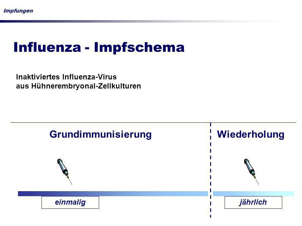 Influenza - Impfschema