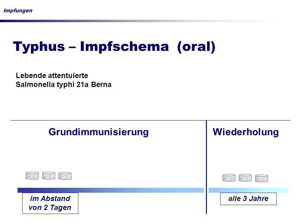 Typhus – Impfschema (oral)