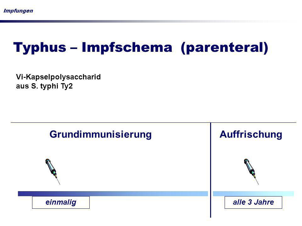 Typhus – Impfschema (parenteral)