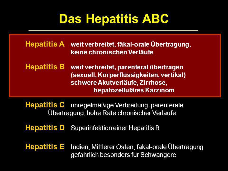 Das Hepatitis ABC Hepatitis A weit verbreitet, fäkal-orale Übertragung, keine chronischen Verläufe.