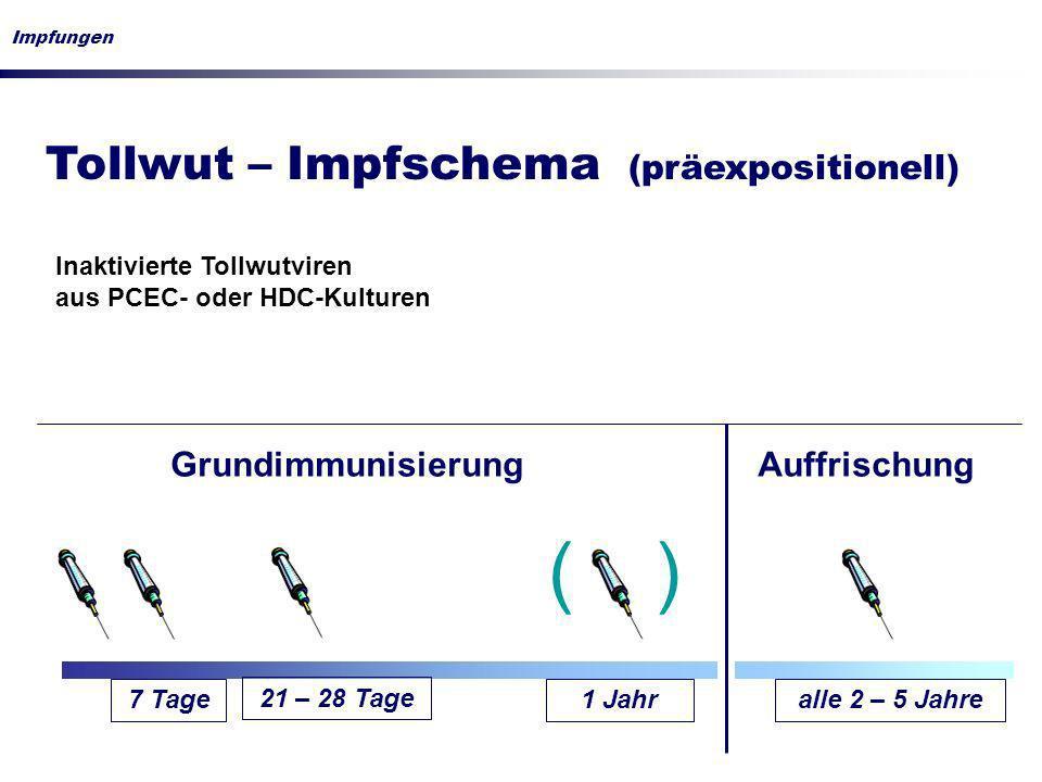 ( ) Tollwut – Impfschema (präexpositionell) Grundimmunisierung