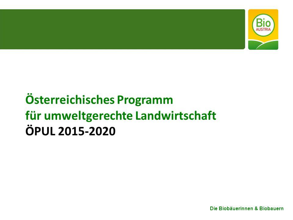 Österreichisches Programm