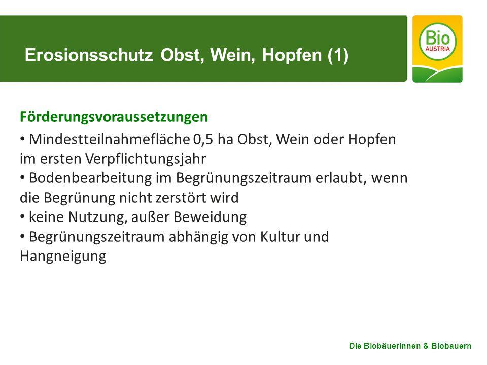Erosionsschutz Obst, Wein, Hopfen (1)