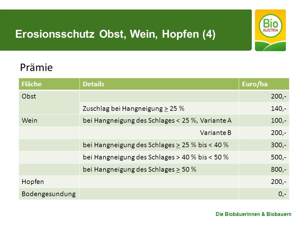 Erosionsschutz Obst, Wein, Hopfen (4)
