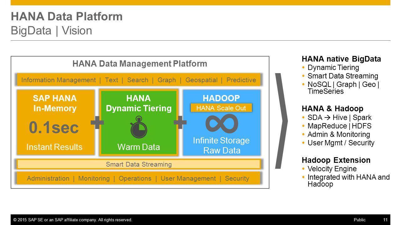 HANA Data Platform BigData | Vision