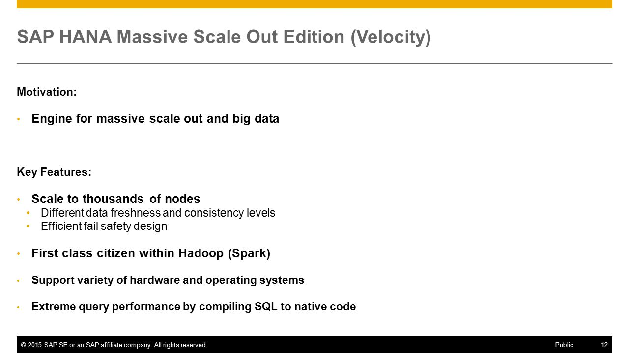 SAP HANA Massive Scale Out Edition (Velocity)