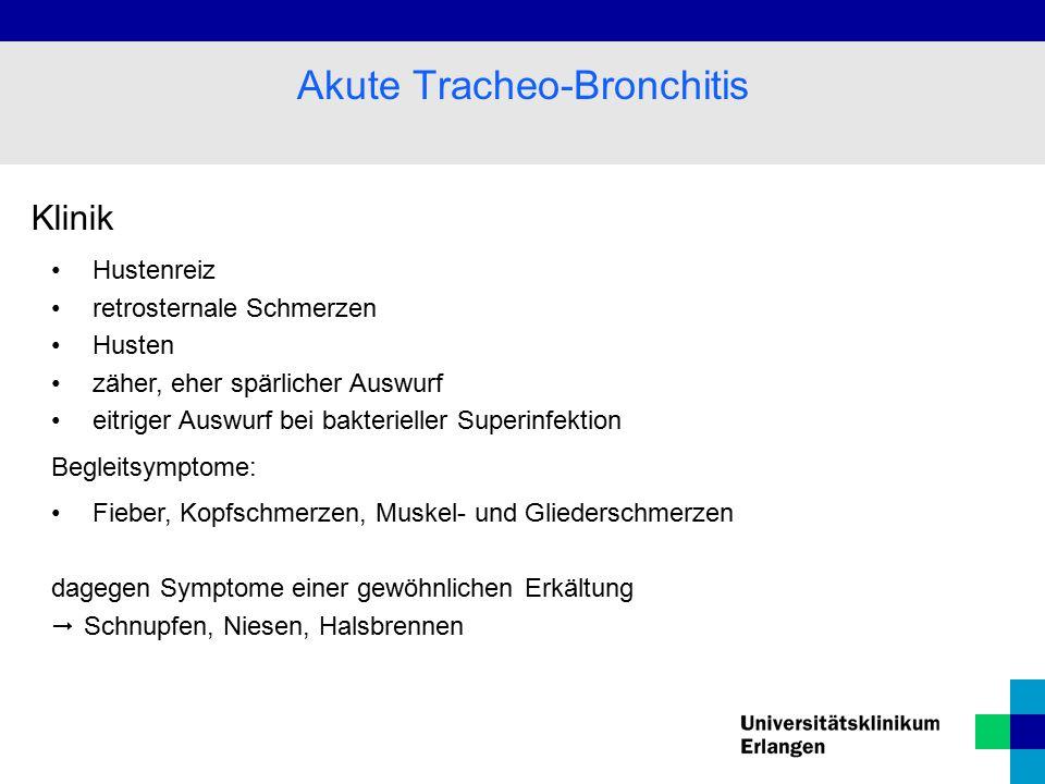 Akute Tracheo-Bronchitis