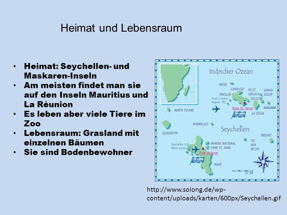 Heimat und Lebensraum Heimat: Seychellen- und Maskaren-Inseln