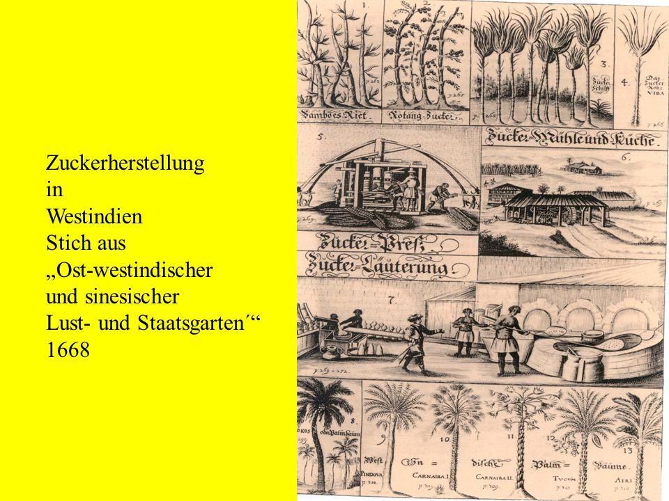"""Zuckerherstellung in. Westindien. Stich aus. """"Ost-westindischer. und sinesischer. Lust- und Staatsgarten´"""