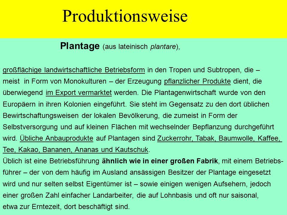 Produktionsweise Plantage (aus lateinisch plantare),