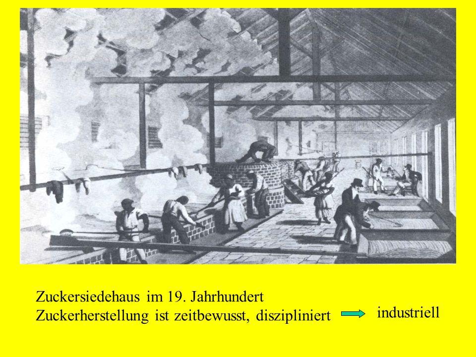 Zuckersiedehaus im 19. Jahrhundert