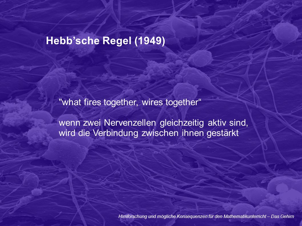 Hebb'sche Regel (1949) what fires together, wires together