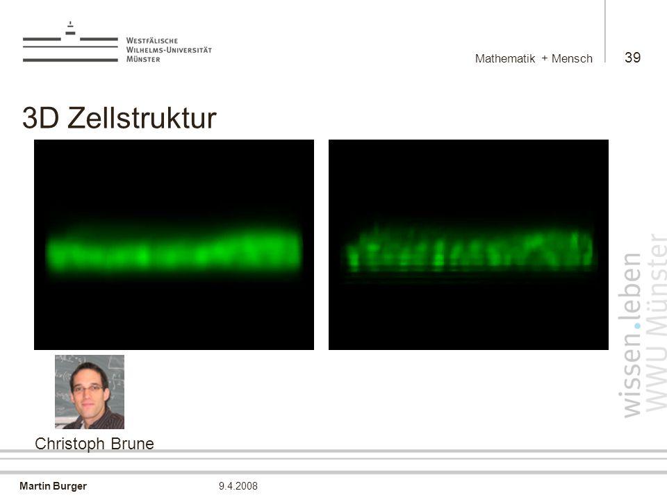Mathematik + Mensch 3D Zellstruktur Christoph Brune 9.4.2008