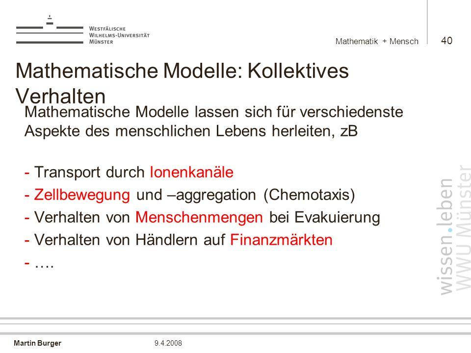 Mathematische Modelle: Kollektives Verhalten