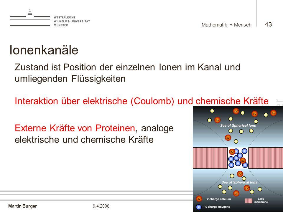 Mathematik + Mensch Ionenkanäle.