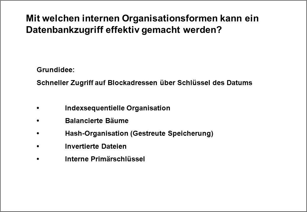 Mit welchen internen Organisationsformen kann ein Datenbankzugriff effektiv gemacht werden