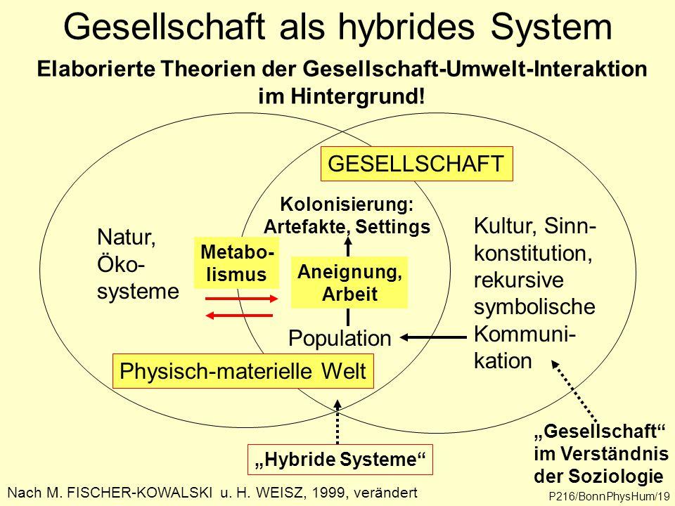 Gesellschaft als hybrides System