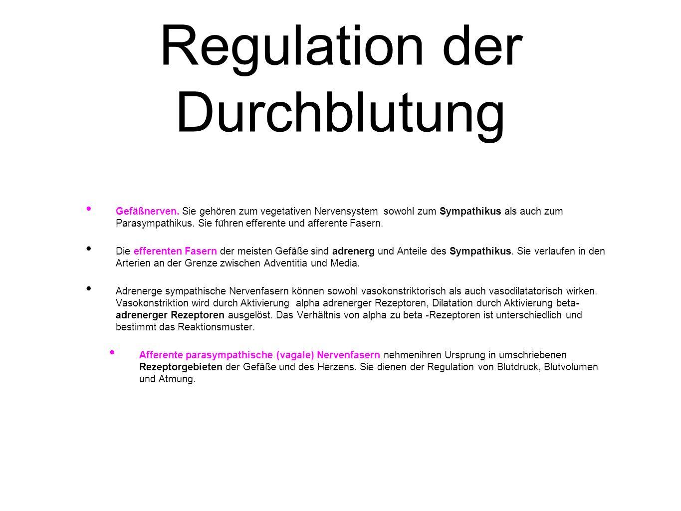 Regulation der Durchblutung