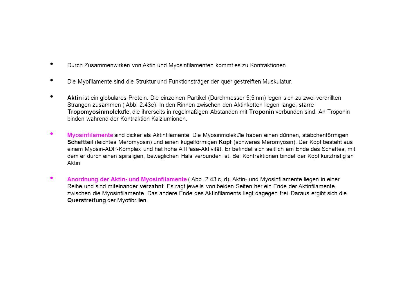 Nice Kontraktionen Arbeitsblatt 2Klasse Festooning - Kindergarten ...