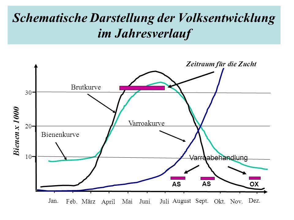 Schematische Darstellung der Volksentwicklung im Jahresverlauf