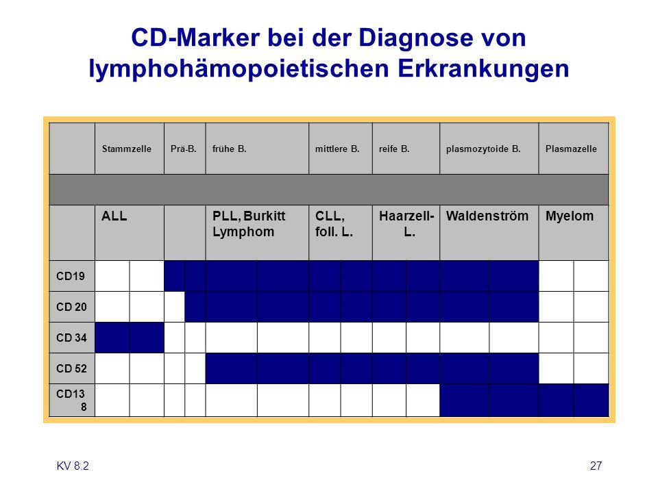 CD-Marker bei der Diagnose von lymphohämopoietischen Erkrankungen