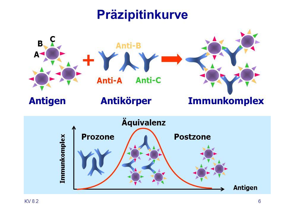 + Präzipitinkurve Antigen Antikörper Immunkomplex C B A Anti-B Anti-A