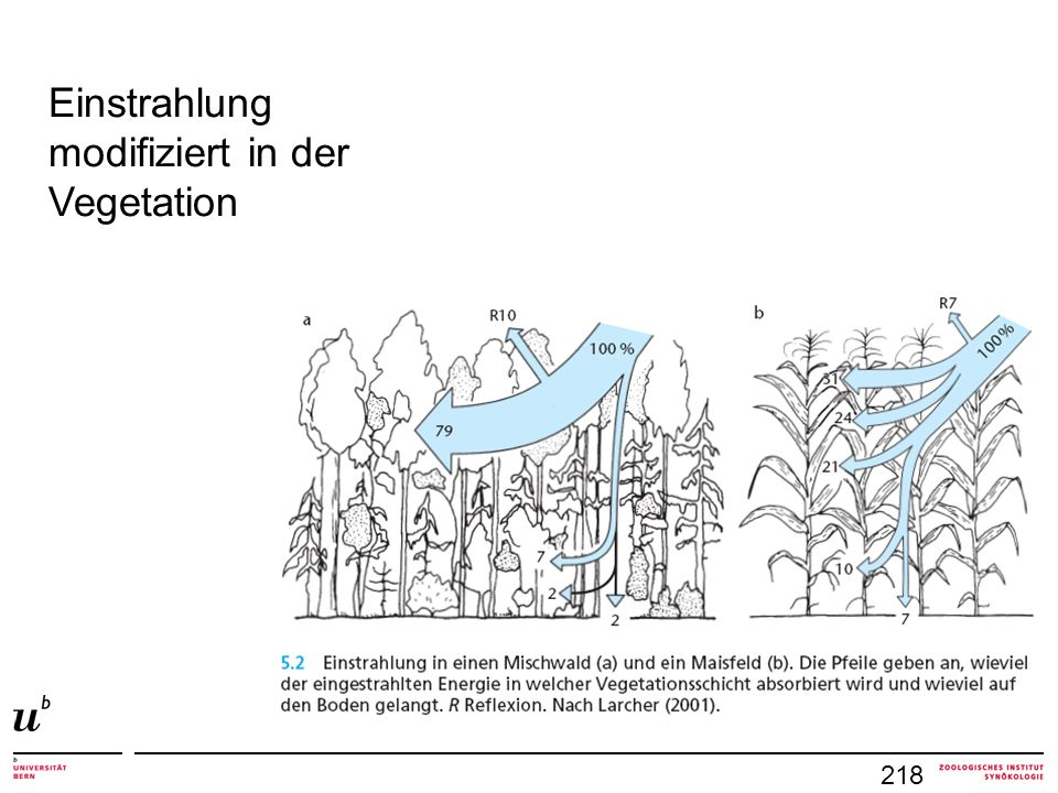 Einstrahlung modifiziert in der Vegetation 218