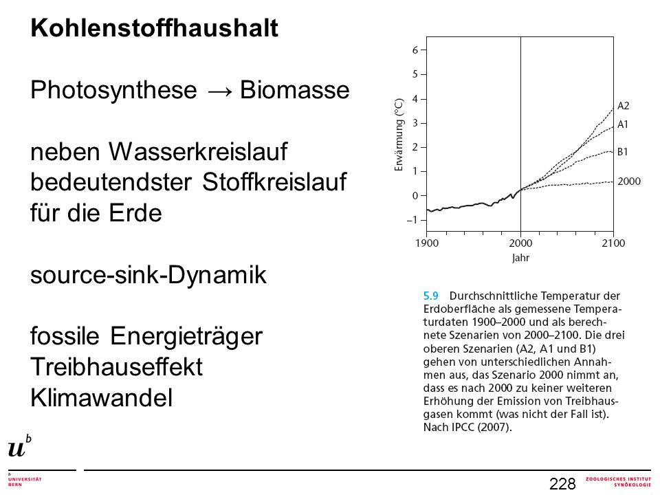 Photosynthese → Biomasse neben Wasserkreislauf