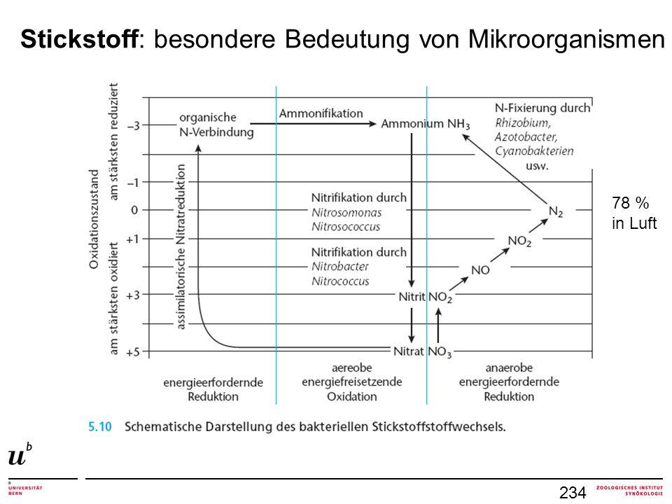 Stickstoff: besondere Bedeutung von Mikroorganismen