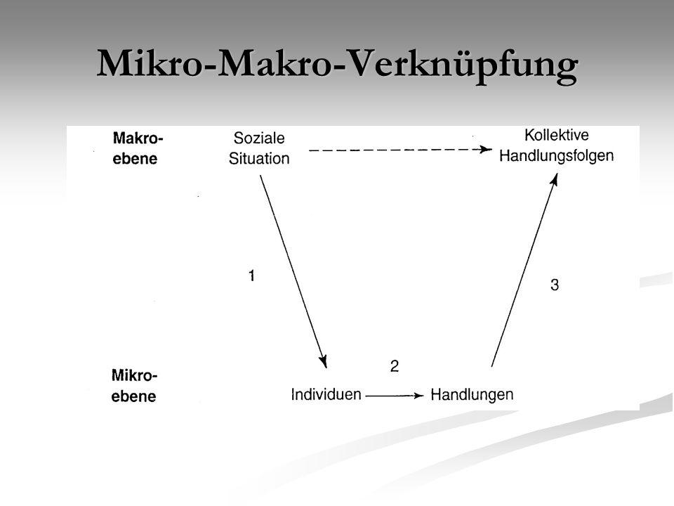 Mikro-Makro-Verknüpfung