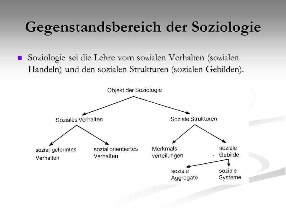 Gegenstandsbereich der Soziologie