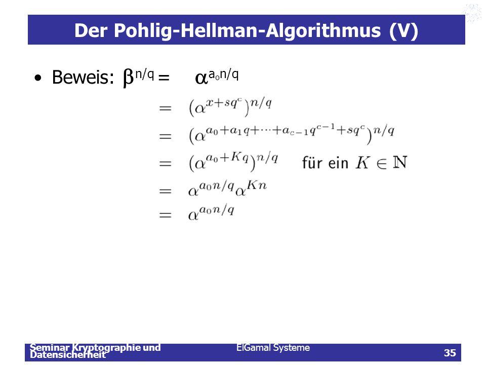 Der Pohlig-Hellman-Algorithmus (V)